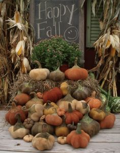PatternMart.com ::. PatternMart: Farmers Field Primitive Pumpkins