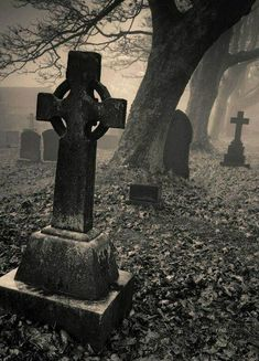 This is another spooky old cemetary where ghosts haunts at the ghosts only haunt this old spooky cemetary at night time Cemetery Statues, Cemetery Headstones, Old Cemeteries, Cemetery Art, Graveyards, Gothic Horror, Gothic Art, Architecture Religieuse, Arte Obscura
