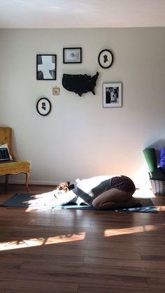 morning yoga Lots of wiggles and chest openers in this slow morning yoga flow. … morning yoga Lots of wiggles and chest openers in this slow morning yoga flow. …,uncategorized morning yoga Lots of. Yoga Meditation, Yoga Restaurativa, Vinyasa Yoga Poses, Basic Yoga Poses, Yoga Moves, Yoga Exercises, Hot Yoga, Fitness Exercises, Namaste Yoga
