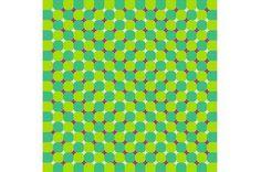 Whoah.  primrose_field_best_optical_illusion