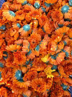 En 1977, Yves Rocher imaginait pour la première fois des produits de beauté au Calendula. Aujourd'hui, nous le cultivons au coeur de nos champs à La Gacilly, en France, pour ses propriétés adoucissantes et régénératrices. Yves Rocher, Calendula, Festival Photo, Zoom, Champs, Creme, Skincare, Pumpkin, Rainbow
