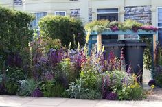 Here's another part of Community Street, inspired by the RHS Campaign, Greening Grey Britain, this exhibit demonstrates how you can have a functional, useful outdoor space that fulfils all your needs and accommodates a bin area and other requirements, but still looks beautiful and includes colourful plants and areas to garden.