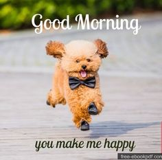 Are you searching for images for good morning motivation?Browse around this site for unique good morning motivation inspiration. These funny pictures will make you happy. Cute Good Morning Pictures, Cute Good Morning Messages, Good Morning Handsome, Good Morning Quotes For Him, Good Morning Funny, Good Morning Love, Morning Humor, Good Morning Wishes, Good Morning Animals
