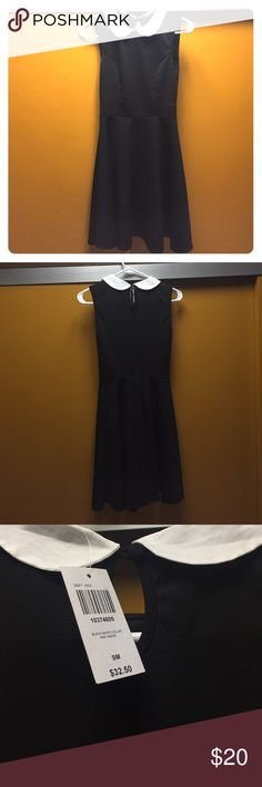 """Black + White Collar Knit Dress 💁🏽💁🏽💁🏽 Okay, so I LITERALLY got this today, tried it on, and bought it at HT (Hot Topic). Then I didn't want it anymore; however I couldn't return it because it's """"final sale."""" Anyway, the tags are still on the dress, no tears, deodorant marks etc. (mainly bc I literally tried it on once 😂😂😂). So if you're interested in this BRAND SPANKIN' NEW dress, maybe to dress up as Wednesday Addams or just because you want this dress, feel free to buy it off my…"""
