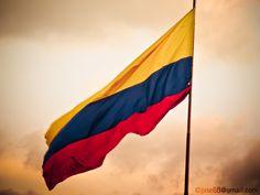 Flag of Colombia by Sebastián Valencia, via Colombian People, Colombian Art, Colombia Map, Spanish Flags, Batman Wallpaper, Muse Art, Flag Art, New Memes, Cars