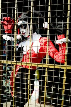 Behind bars by ~gillykins on deviantART