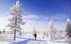 Τα 10 πιο μαγικά μέρη του κόσμου για να επισκεφτεί κανείς τα Χριστούγεννα (φωτογραφίες) | διαφορετικό