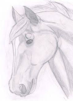 Afbeeldingsresultaat voor how to draw a horse head step by step