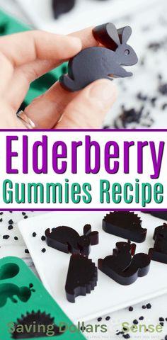 Elderberry Gummies Saving Dollars and Sense Elderberry Gummies, Elderberry Recipes, Elderberry Syrup, Healthy Foods To Eat, Healthy Kids, Healthy Recipes, Stay Healthy, Healthy Living, Snack Recipes