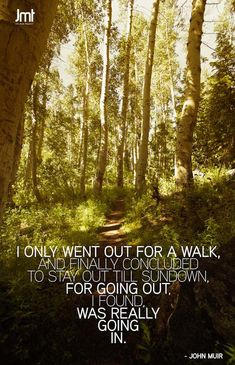 I only went out for a walk ~ and finally concluded to stay out till sundown ~ for going out I found I was really going in ~ John Muir ~ WILD WOMAN SISTERHOOD™ All Nature, Nature Quotes, Forest Quotes, John Muir Quotes, John Muir Trail, Hiking Quotes, Gaia, The Mountains Are Calling, Walk In The Woods