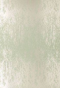 Wallcovering / Wallpaper | Birches in Aqua / Silver | Schumacher