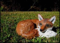 Reyne, a garden fox - HOME SWEET HOME