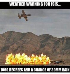 Amen! Army Humor, Military Humor, Us Military, Gun Humor, Usmc, Marines, I Salute You, Military Quotes, Land Of The Free