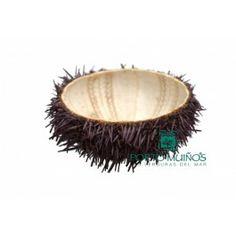 Concha de Erizo de Mar. Sea Urchin Shell. #sof #comidaespañola #españa #galicia #erizomar #plato #concha #gourmet #delicatessen #spanishfood #spain #seaurchin #shell #natural #instafood #instagood #yummy Spanish Food Online Comida Española