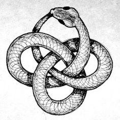 Ouroboros - Le symbole Ouroboros représente traditionnellement un serpent ou un dragon, de forme circulaire, dévorant sa propre queue. Il symbolise l'infini, le renouveau & l'éternel retour.