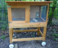 plans for bunny cages | Eastern white cedar rabbit hutch on mobile stand of pressure treated ...