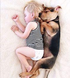 Buenas noches queridos seguidores   #PetsWorldMagazine #RevistaDeMascotas #Panama #Mascotas #MascotasPty #PetsMagazine #MascotasAdorables #Perros #PerrosPty #PerrosPanama #Pets #PetsLovers #Dogs #DogLovers #DogOfTheDay #PicOfTheDay #Cute #SuperTiernos