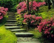 Japanese Gardens - 611 SW Kingston Ave. Portland, Oregon 97205