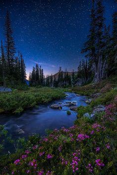 Washington State, Olympic National Park by Irwing Hernandez