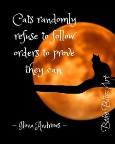 Animal Lover Quotes, Cat Quotes, Art Prints Quotes, Wall Art Quotes, Quote Wall, Moon Lovers, Cat Lovers, Prove It, Earn Money From Home