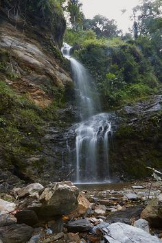 Waterfall near Dili Timor Leste. Cool Swimming Pools, Timor Leste, Waterfall, Road Trip, Asia, Journey, Travel, Outdoor, Outdoors