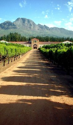 South Africa. The wineland around the town Stellenbosch.ca.100 km from Cape Town. Here you see one of many enchanges to a wineyard, where you will be welcome to taste their wine.