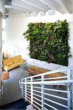 jardín vertical, pared blanca de ladrillo blanco