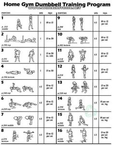 free printable dumbbell workout chart  weight lifting