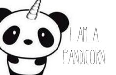Vive les pandicornes !