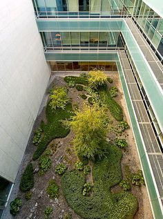 Jardín patio edificio oficinas Madrid 2007 | Flickr - Photo Sharing!