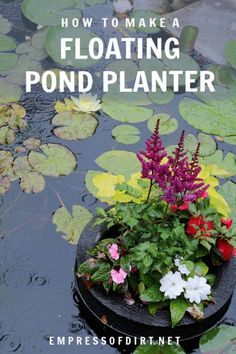Homemade floating pond planters or mini islands are a lovely way to add pops of colourful flowers to your garden pond. You can also use them to sail garden art or candles. They are very pretty on a summer evening. pond How to Make a Floating Pond Planter Floating Pond Plants, Floating Garden, Garden Art, Garden Plants, Garden Design, Planter Garden, Garden Beds, Organic Gardening, Gardening Tips