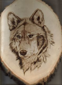 This is my 1st attempt ever at woodburning. My Grandfather is very good with woodworking and has recently taken up woodburning. I was always curious so one day he just taught me how. When he showed...