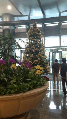 公司 building 1F的聖誕樹.。