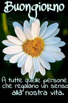 Italian Memes, Day For Night, Spanish Quotes, Good Morning, Facebook, Peanuts, Luigi, Mornings, Den