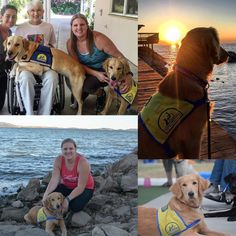 Meet Laura and her 8 & 10th Canine Companion for Independence pups, Mary & Battier!  Keep up the amazing work!! 👏🙌   Canine Companion for Independence provide highly trained assistance dogs to children & adults living with disabilities, free of charge, since 1975!   We're proud to help them with their fundraisers and donate 10% as our designated non-profit.   ❤️ #cci #servicedogs  #lake30 #giveback