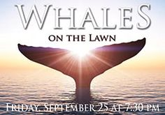 Join us as we learn all about humpback whales!
