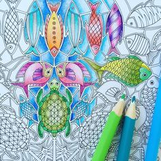 "Johanna Basford op Instagram: ""#LostOcean - a new wave of detail! (I'm sorry, I just can't resist an ocean themed pun!). I've posted a new blog on my website about some of the more detailed images in Lost Ocean with some tips on how to tackle this new colouring experience. This is my colouring pencil efforts over the weekend! Www.johannabasford.com/blog #johannabasford #coloring #colouring"""