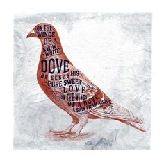 Dove by Alexis Jamet, via #Behance #Typography #Handlettering