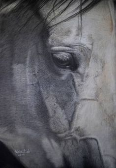 "Saatchi Art Artist David Mela; Drawing, ""Horse III"" #art"