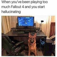 When you've been playing too much Fallout 4 and you start hallucinating - iFunny :) Fallout 4 Funny, Fallout Facts, Fallout Comics, Wii, Xbox, Playstation Games, Video Game Memes, Fall Out 4, Gaming Memes