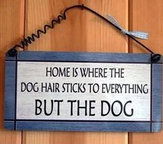 Soooo very true for the long haired dogs!  #Fur #LongHair #Messy #Crazy #Husky