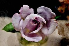 painted flower images - Google Search