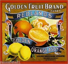 *Original* REDLANDS PRIDE Bryn Mawr Orange Crate Label NOT A COPY!