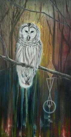 Night owl. Elisa de la Torre