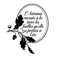 Tampon transparent 'Lorelaï Design' L'Automne Raconte