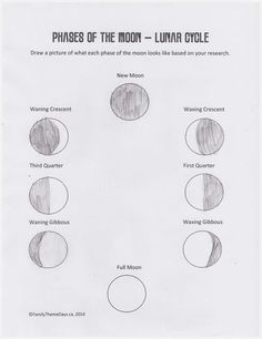 Moon Phases Worksheet - Free Printable