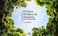 """à beira do urbanismo: SOS Amazônia""""(..) é preciso estancar a sangria da floresta, ou seja, zerar o desmatamento, a degradação florestal e o fogo já, com todos e quaisquer recursos e meios éticos possíveis, no interesse da vida. Ao mesmo tempo, em vista do diagnóstico de que desmatamento e degradação acumulados constituem-se no mais grave fator de dano ao clima, torna-se necessário e inevitável desenvolver um amplo esforço para replantar e restaurar a floresta destruída. (..)"""""""