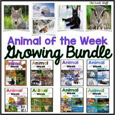 Animal of the Week growing bundle.