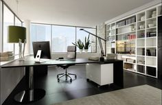 Modern Design. Executive Home Office.