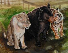A beautiful watercolor painting by Cheryl Johnson of Portland, ME depicting our beloved BLT is now available in high quality prints on museum quality archival paper. Order yours today and have a beautiful piece of artwork that will stand the test of time. All proceeds help feed and care for the BLT. #BLT #noahsark #watercolor   Noah's Ark Animal Sanctuary — BLT - High Quality Artist Print 8 X 10